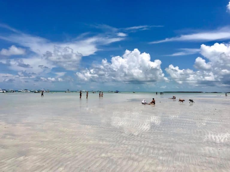 Spend a day like a local, at the Sandbar!